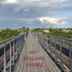 set-declare-share-blog-image